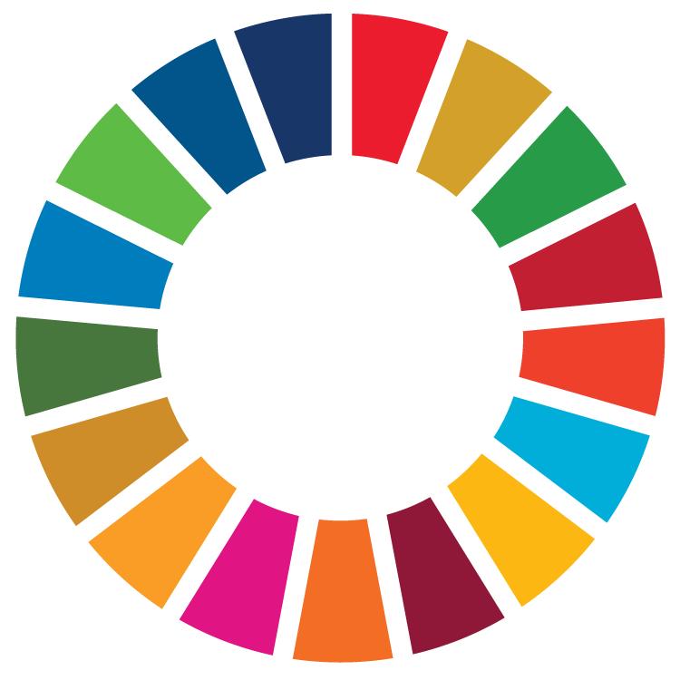 UN SDG colour wheel